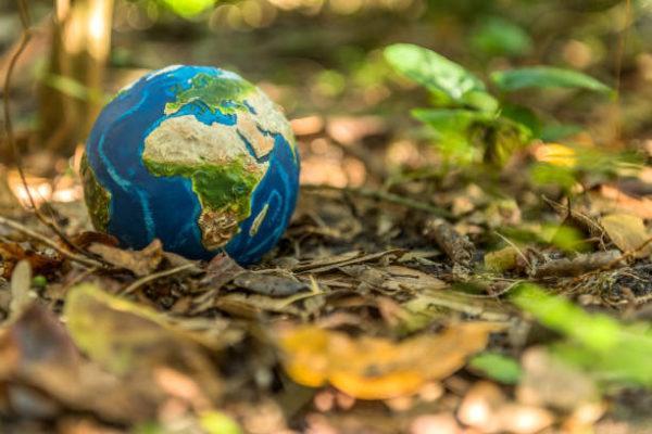 Fin de semana de a limpiar mundo cuando es porque se celebra y como podemos celebrarlo