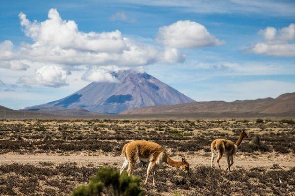 Cómo contribuyen los volcanes al cambio climático temperatura