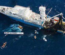 Los atuneros europeos están agotando las reservas del Pacífico Sur