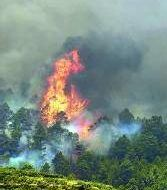 Municipios afectados en los incendios de Canarias