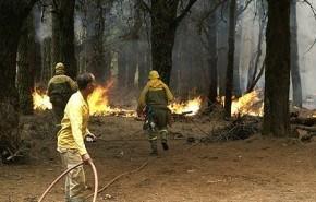 Arde Canarias, ¿pagarán los culpables?